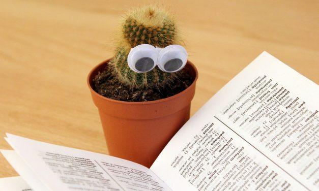 Az olvasás öröméről