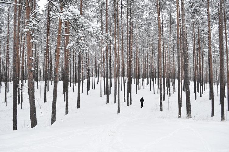 Mezítláb a hóban