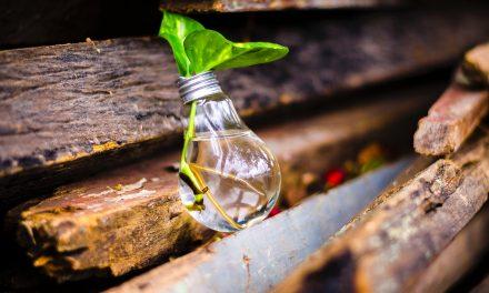 Vlog: Az innováció lélektana