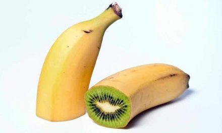 Hogyan viszonyuljunk a génmódosított élelmiszerekhez?